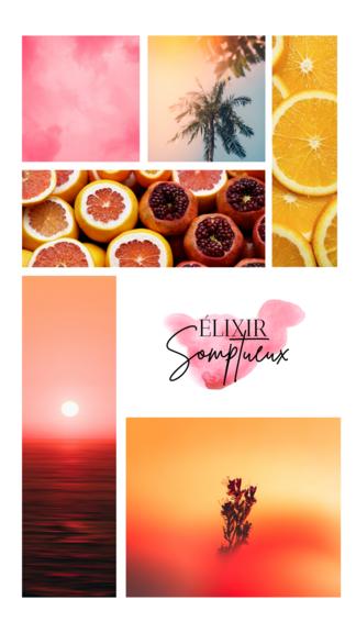 """""""Élixir somptueux"""" est un parfum très lumineux. Une essence à la fois fruitée, ensoleillée avec une petite touche sucrée. Vous découvrirez des notes de fruits, de fleurs et de monoï pour le soleil."""