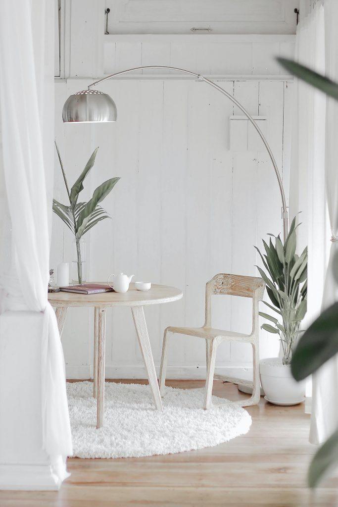 Les plantes d'intérieur pour une ambiance cosy